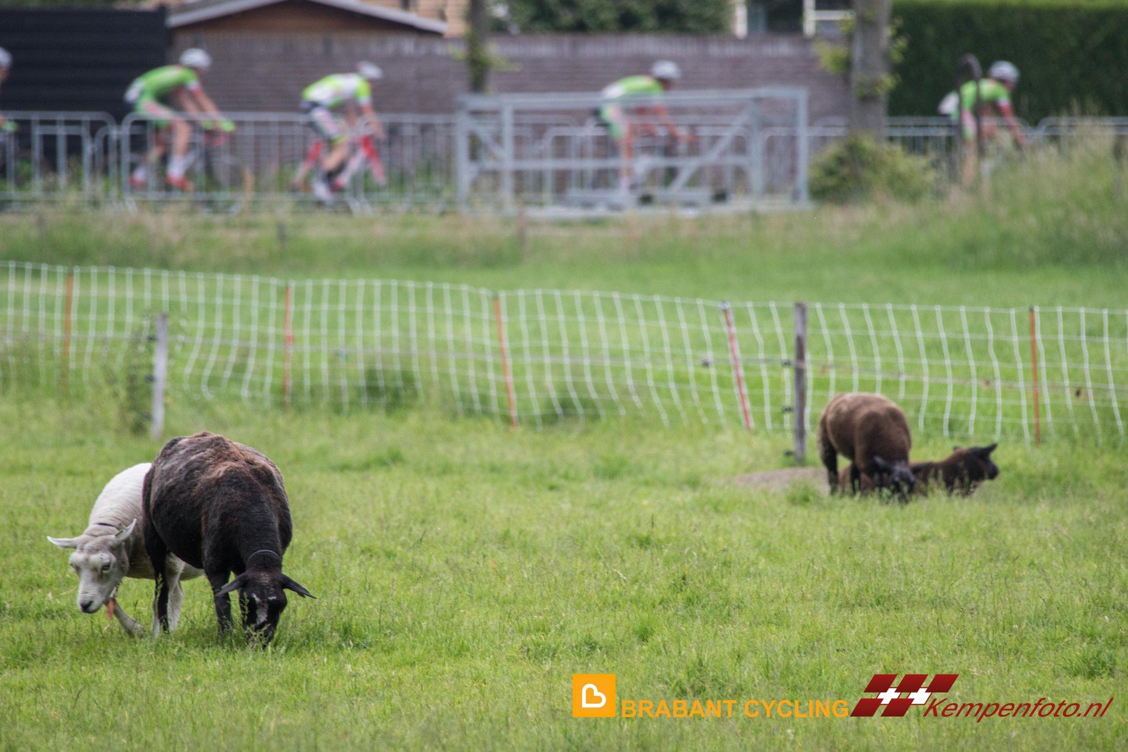 Kempenklassement Westerhoven 2016-39